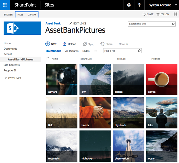 Sharepoint-Digital-Asset-Management-integration-with-Asset-Bank
